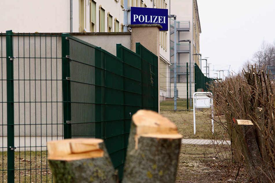 Auch am Polizeirevier Nord wurden Bäume gefällt.