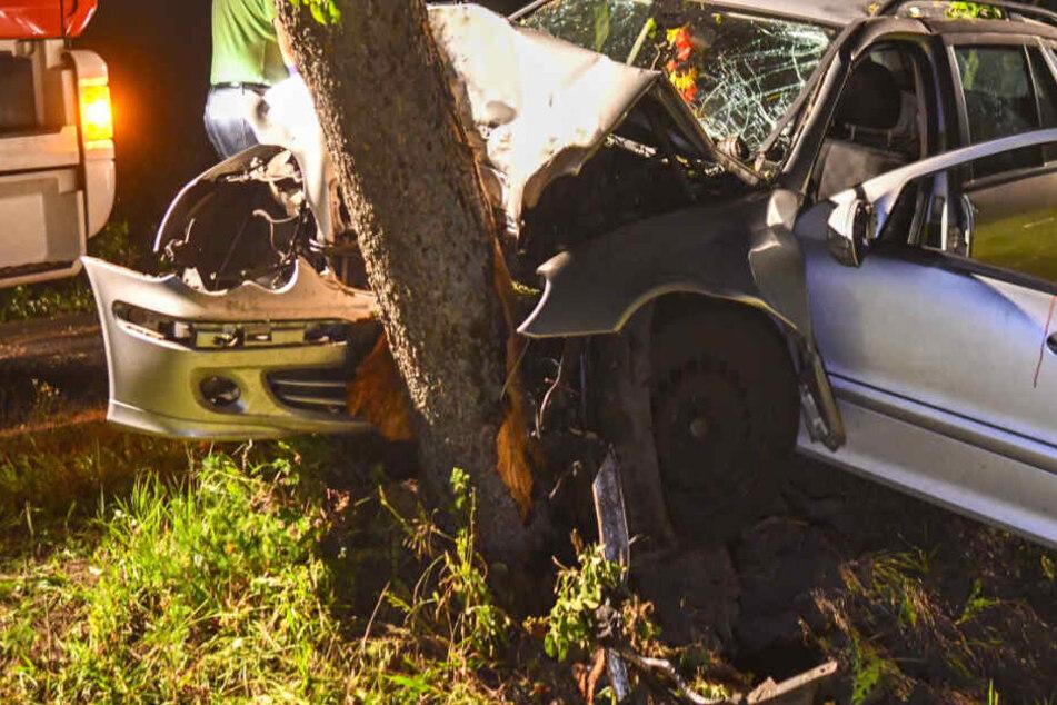 Auto kracht frontal in Baum, dieser zerbricht durch Aufprall in zwei Hälften