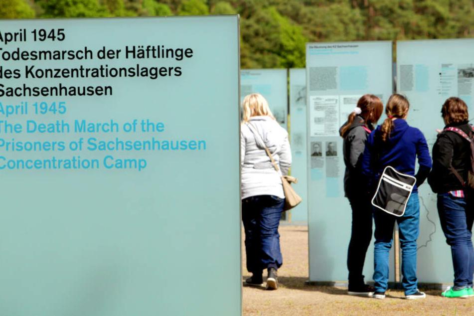 Neue Studie zu Todesmärschen: Wie verhielten sich die Deutschen wirklich?
