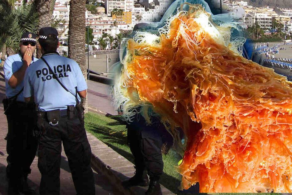 """Richtig gefährlich ist die immerhin 30 Zentimeter lange violette """"Portugiesische Galeere""""."""