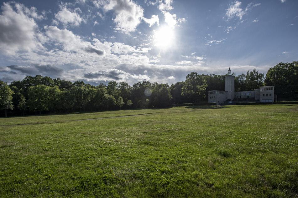 Der Chemnitzer Küchwald: Orte wie diesen will V³ nachhaltiger bewirtschaften.