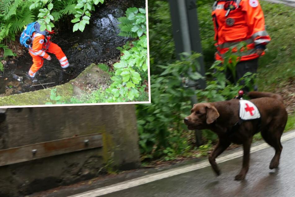 Vermisstensuche bei Leipzig: Können Sachsens Rettungshunde auch diesmal helfen?