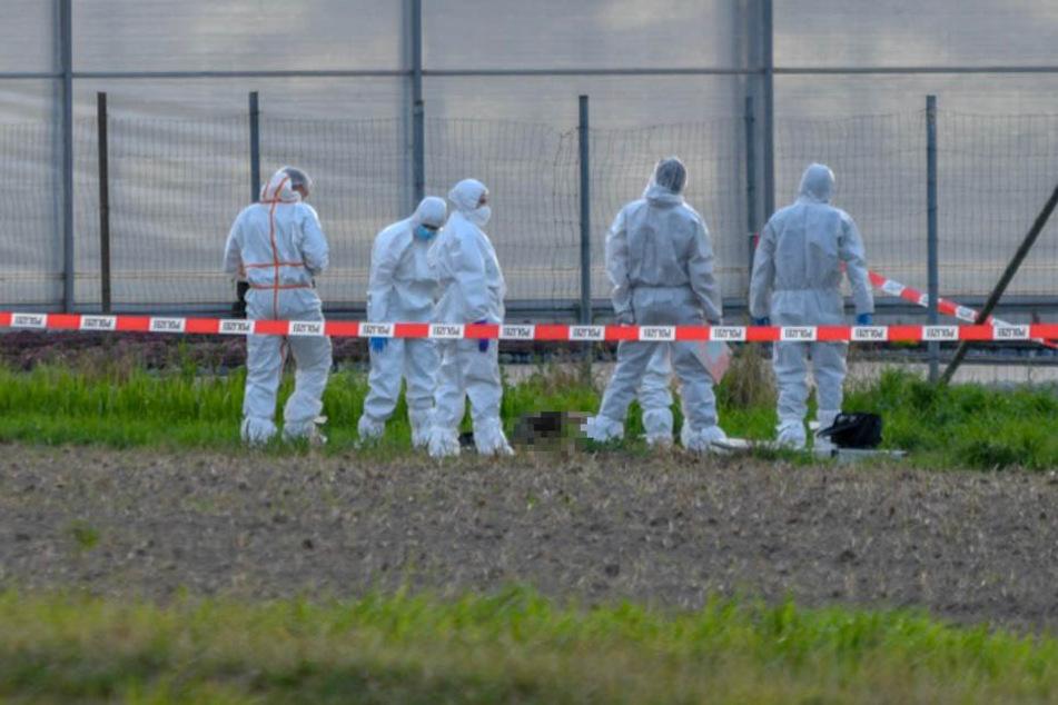 Mordkommission ermittelt: Erntehelfer (37) liegt tot im Graben