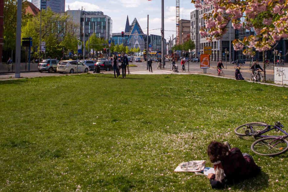 Durch das rasante Wachstum der Stadt schrumpfen die Grünflächen.