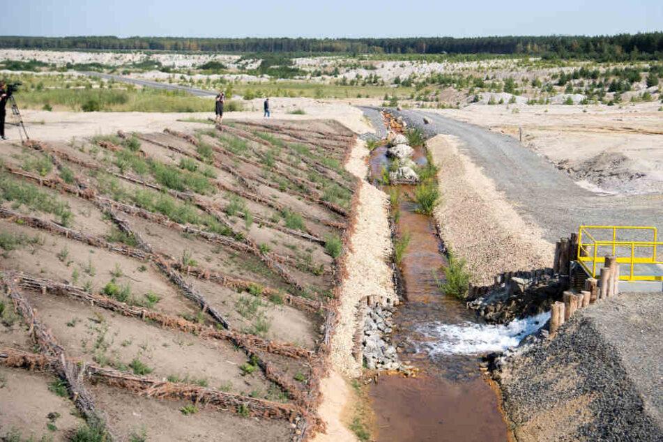 Wasser läuft über einen Graben hinab zur einstigen Kohlegrube. In den kommenden fünf bis sieben Jahren werden 24,3 Millionen Kubikmeter in den See fließen.