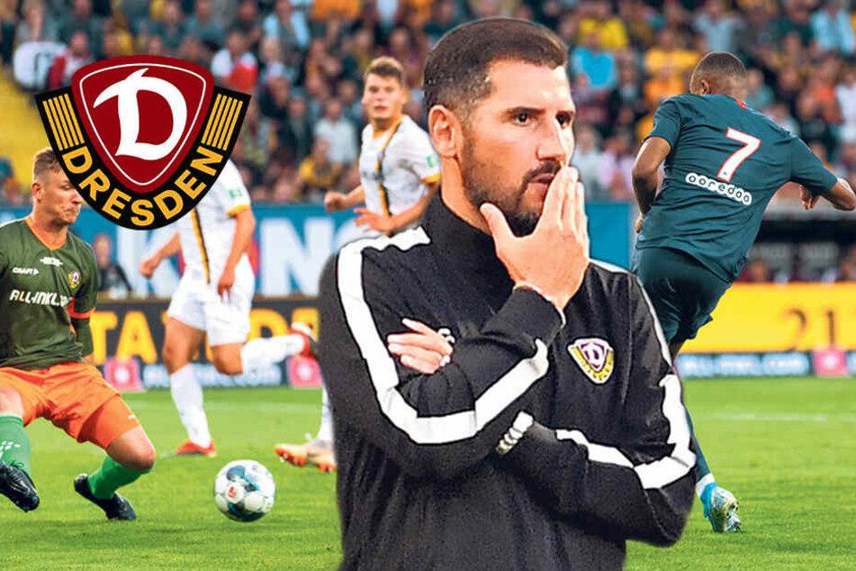 Dynamo-Coach Fiel fordert mehr Mut von seinen Jungs