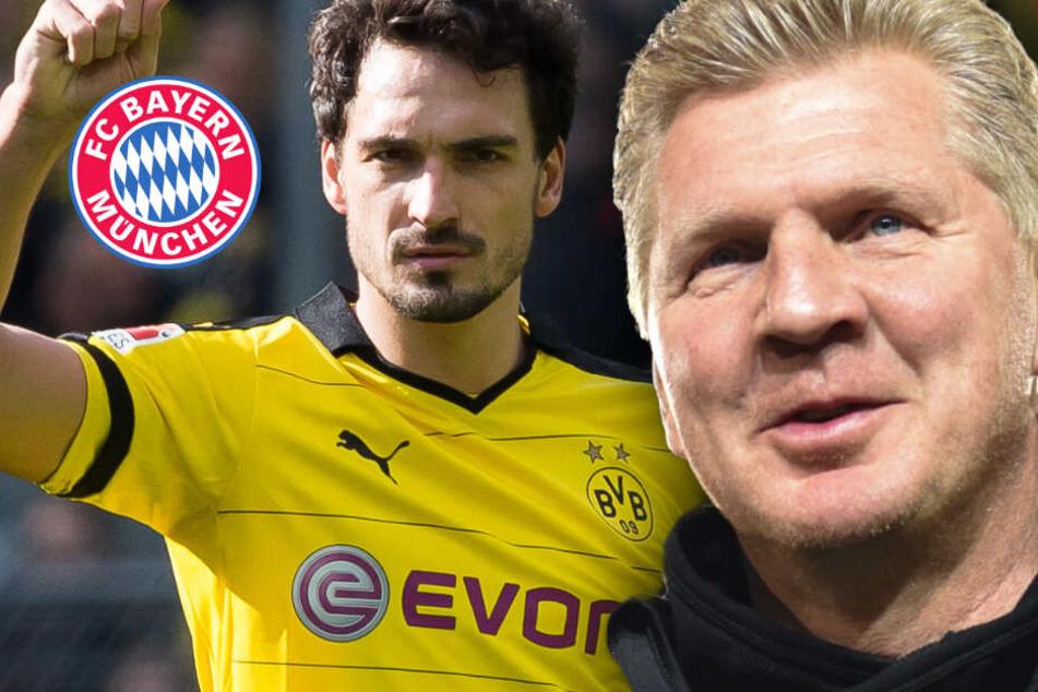 Wechsel von Mats Hummels vom FC Bayern zum BVB: Stefan Effenberg nicht überzeugt