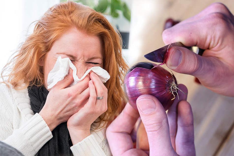 Scharfes Gemüse! Nicht nur bei Erkältung solltet Ihr zur Zwiebel greifen