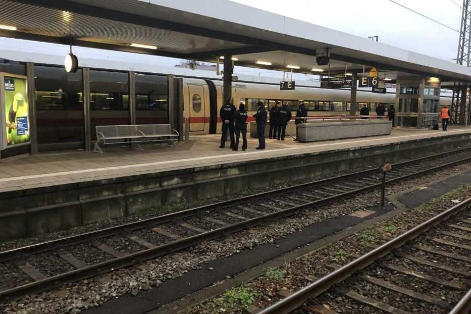 Der Zug wurde von Spürhunden durchsucht.