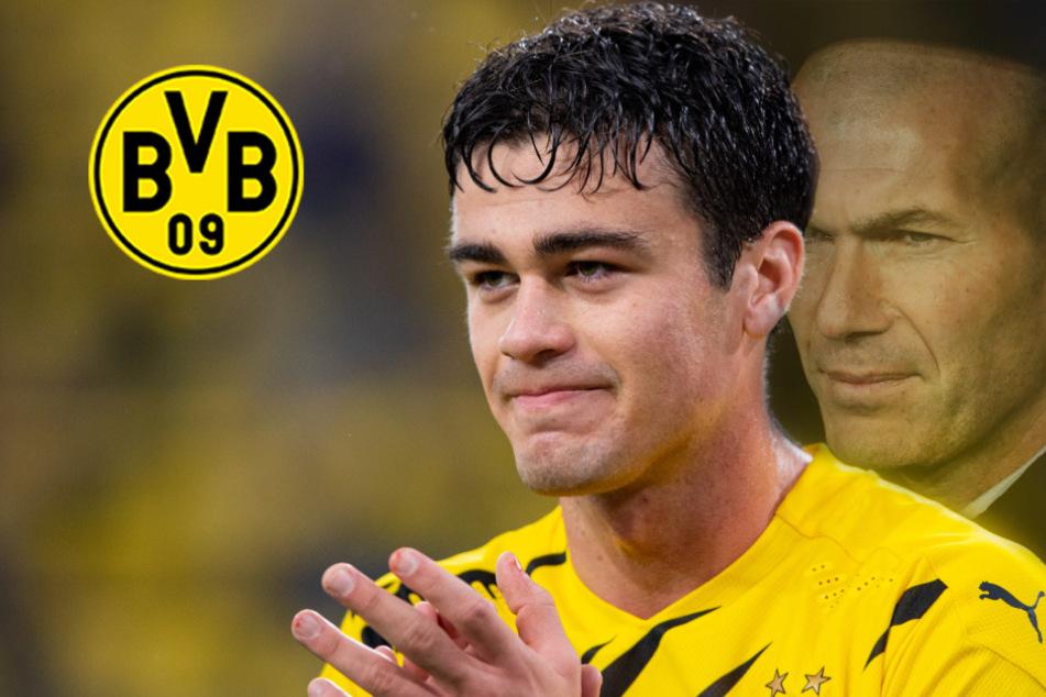 Real-Interesse an BVB-Youngster Reyna: Funkt Zidane der Borussia dazwischen?