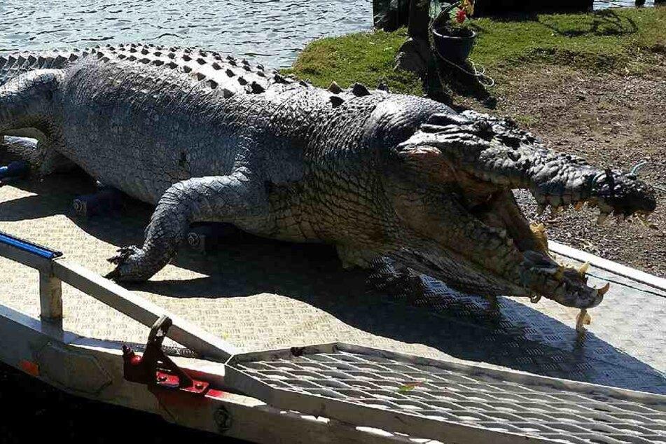 Im Magen des Krokodils fanden sich mehrere Leichenteile eines Fischers (Symbolbild).