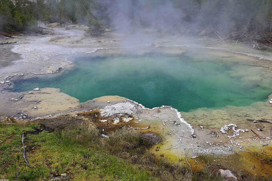 Ein 23-Jähriger ist im Yellowstone-Park ums Leben gekommen.