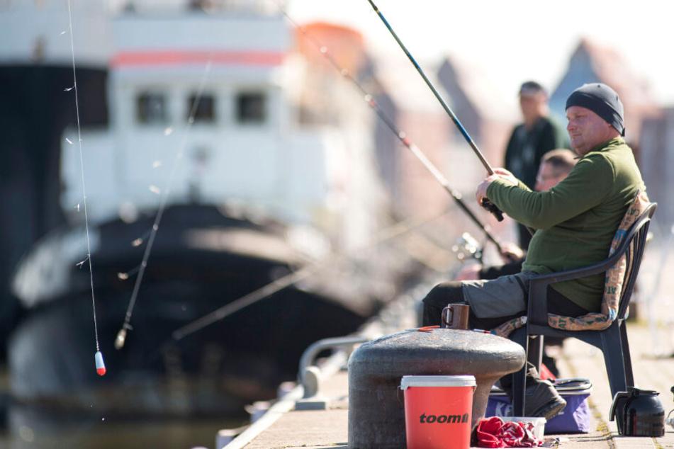 Angler aufgepasst! Verseuchte Fische in Hamburg können krank machen