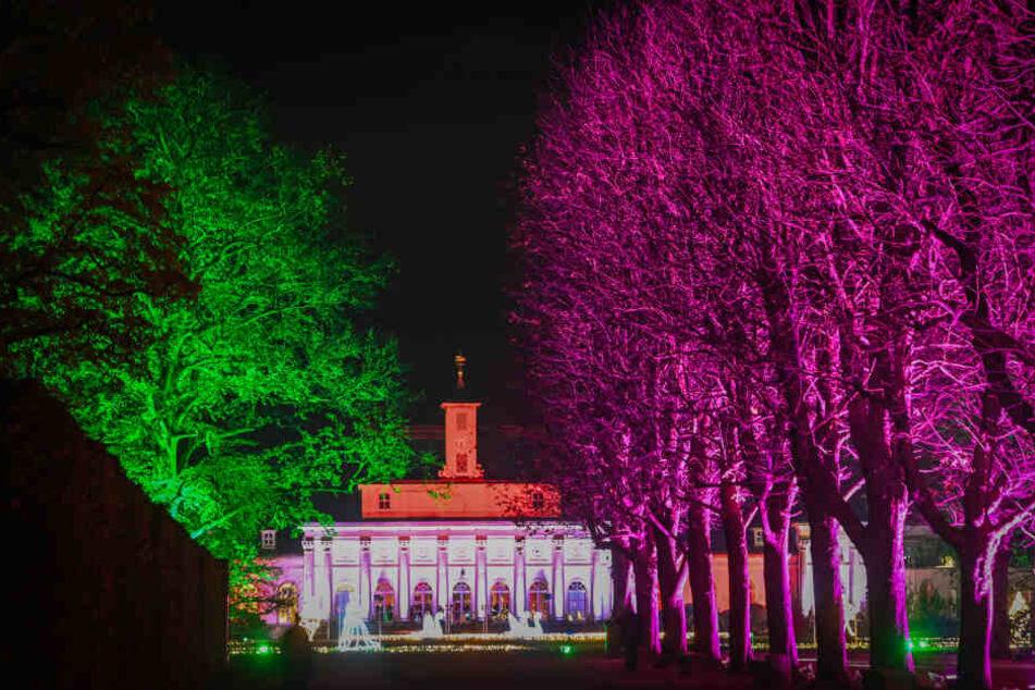Bunte Bäume, leuchtende Fassaden.