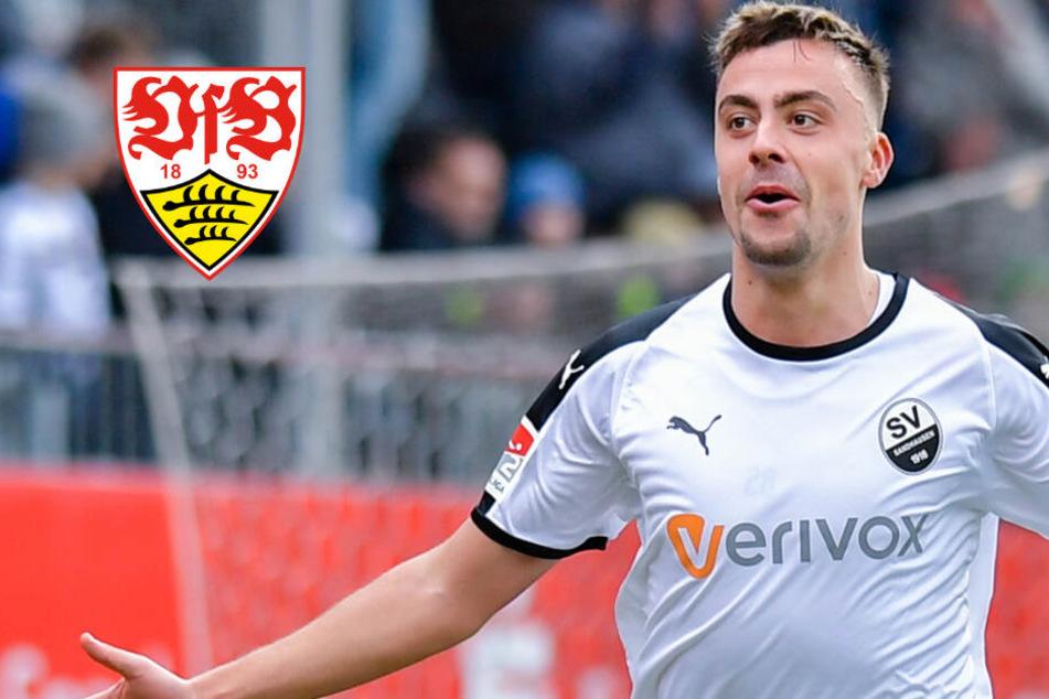 VfB-Transferticker: Wechselt Philipp Förster nach Stuttgart?
