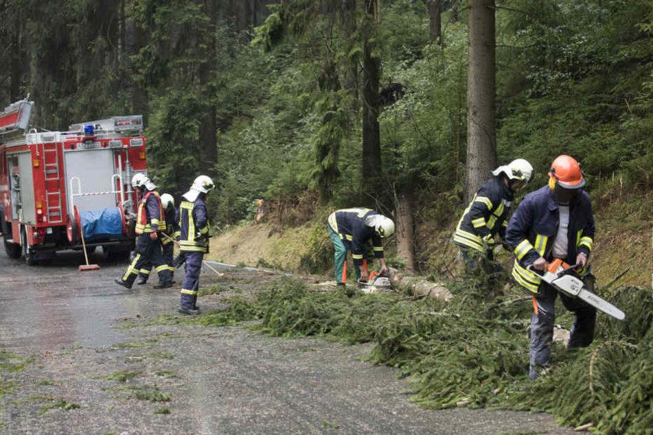 Die Feuerwehr muss nun zahlreiche umgestürzte Bäume auf der Talstraße beräumen.