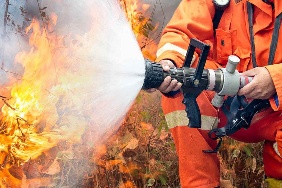 Das Feuer wurde durch einen Schwelbrand in einem Mülleimer ausgelöst.