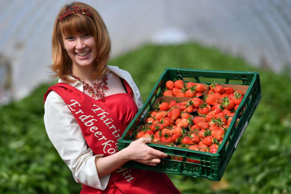Erdbeerkönigin Carolin Leefers mit den ersten Früchten aus Thüringer Ernte.
