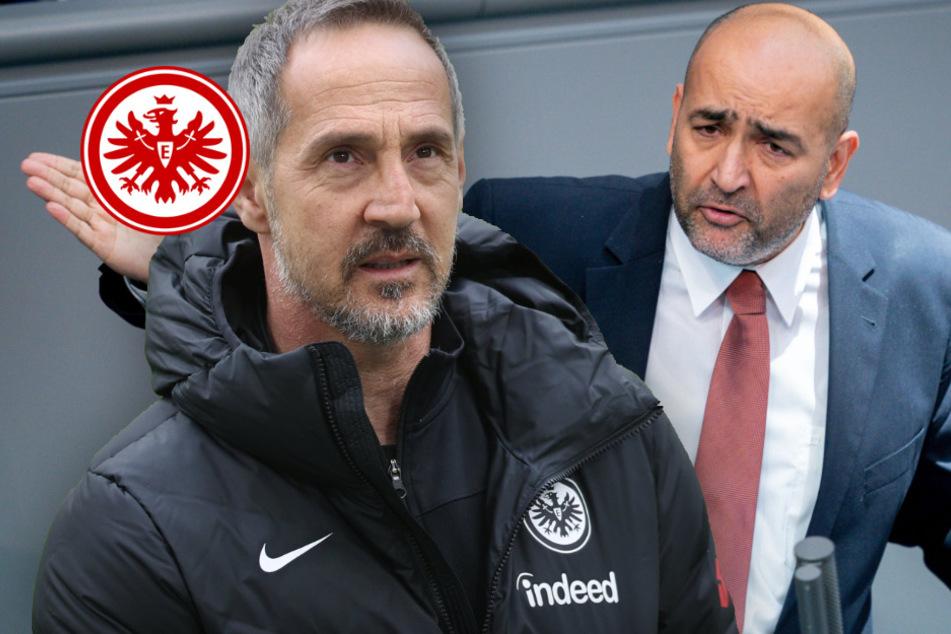 Bundestags-Abgeordneter teilt so richtig gegen Eintracht-Coach Hütter aus