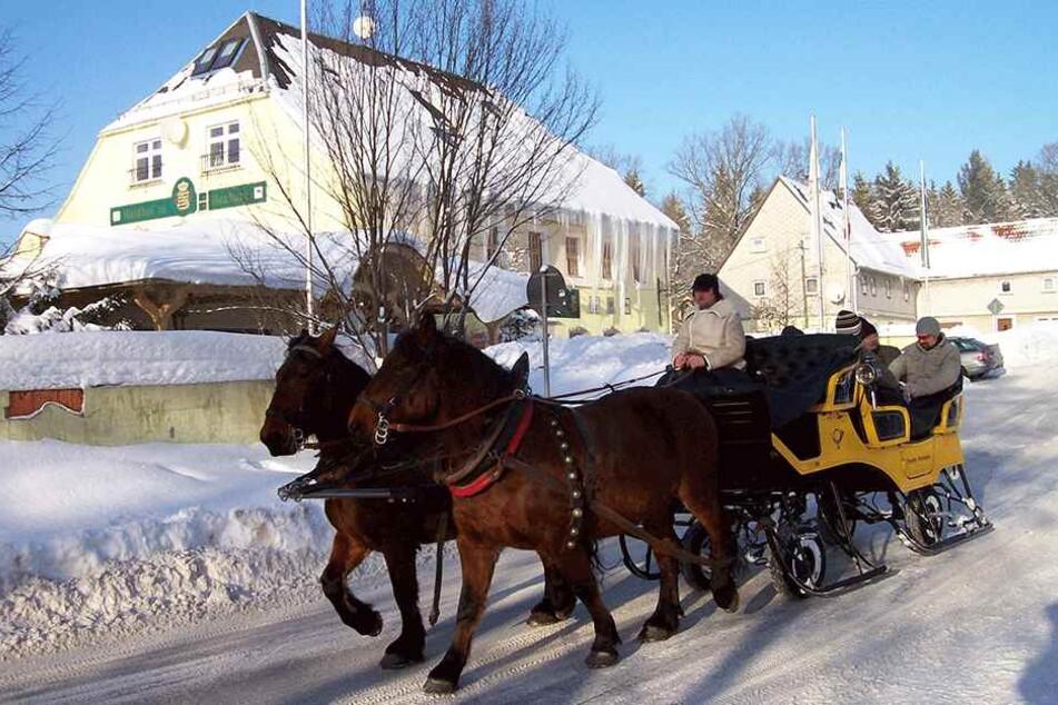 Die Rundfahrten starten in Grillenburg. Bei Schnee kutscht das Gespann auf Kufen durch den Tharandter Wald.
