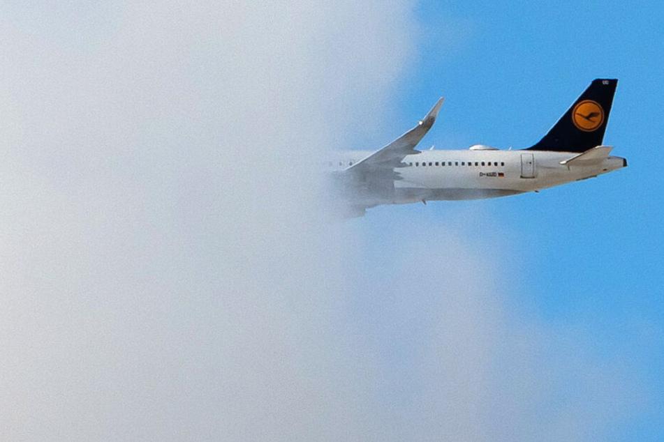 """Die Lufthansa-Maschine musste wegen """"technischer Unregelmäßigkeiten"""" sicherheitshalber landen. (Symbolbild)"""