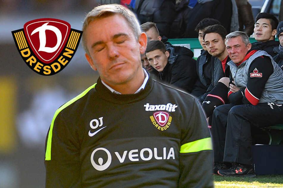 Wie damals! Ex-Dynamo Janßen kämpft wieder gegen den Abstieg