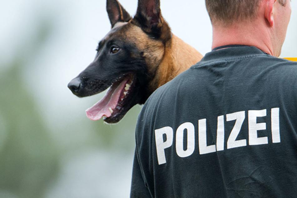 """Gleich zwei Mal half """"Lucky"""" der Polizei bei der Festnahme von Drogen-Schmugglern (Symbolbild)."""