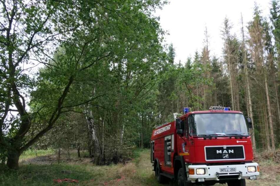 Die Feuerwehr konnte die Flammen schnell unter Kontrolle bringen. Die Ursache für das Feuer ist noch unklar.