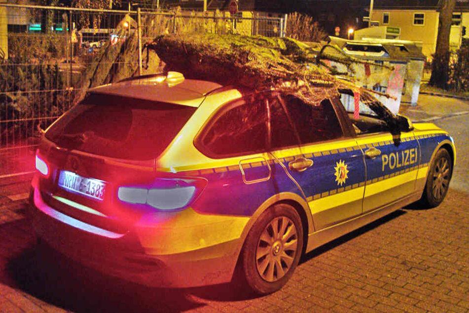 In Mülheim hat die Polizei gestohlene Weihnachtsbäume mit dem Streifenwagen dem Besitzer zurückgebracht.
