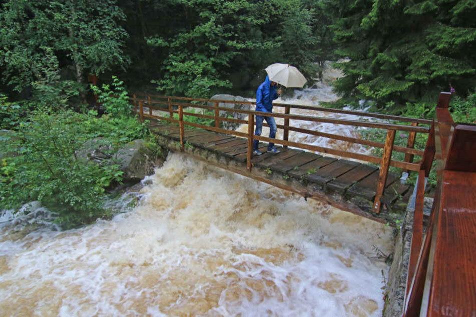 Durch die heftigen Regenfälle im Harz läuft eine Talsperre nahe Werningerode über.