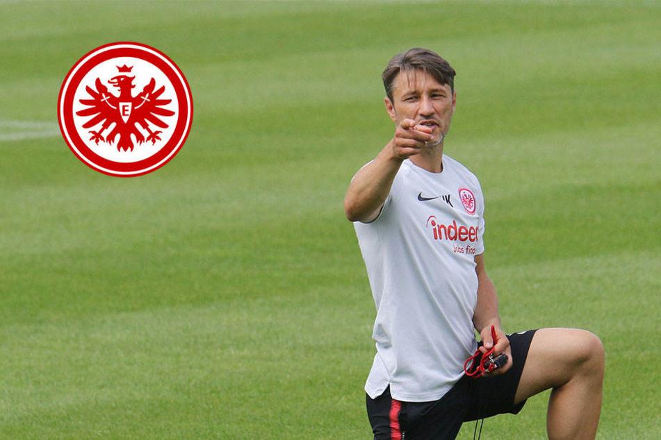 Er gibt die Richtung für die Spieler klar vor: Eintracht-Trainer Niko Kovac.