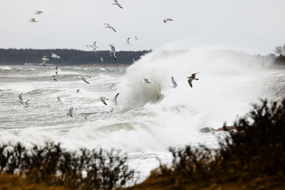Der Deutsche Wetterdienst empfiehlt den Menschen, am Donnerstag zu Hause zu bleiben. Es wird ein Sturmtief erwartet. (Symbolfoto)