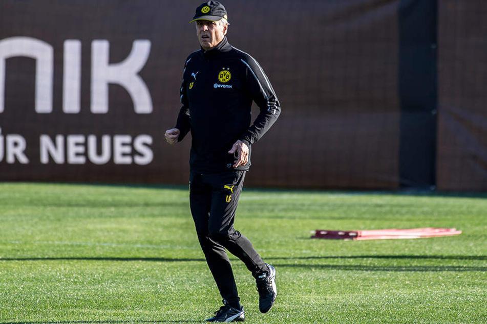 BVB-Trainer Lucien Favre könnte bald neue Spieler bekommen.