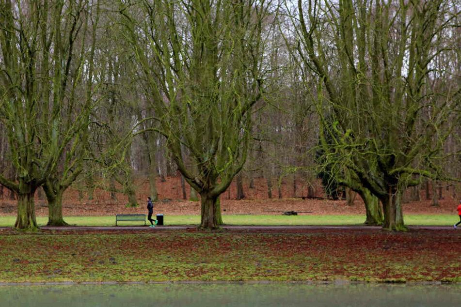 Im Kölner Stadtwald wurde eine schwer verletzte Frau gefunden.