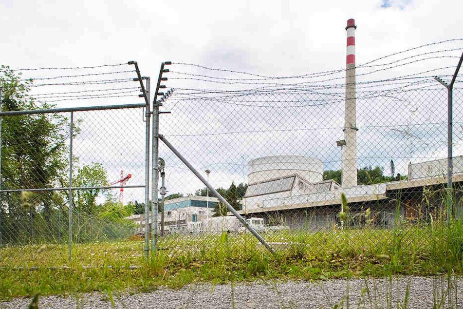 Das Schweizer Kernkraftwerk Mühleberg soll Ende 2019 endgültig geschlossen werden.