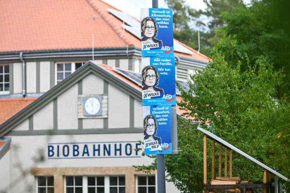 Gleich drei Pappen von Karin Wilke (66, AfD) hängen in Sichtweite des Klotzscher Biobahnhofes.