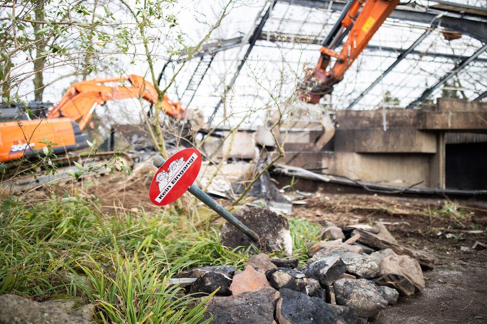 Nach Feuertragödie in Krefelder Zoo: Neue Pläne für Affenhaltung