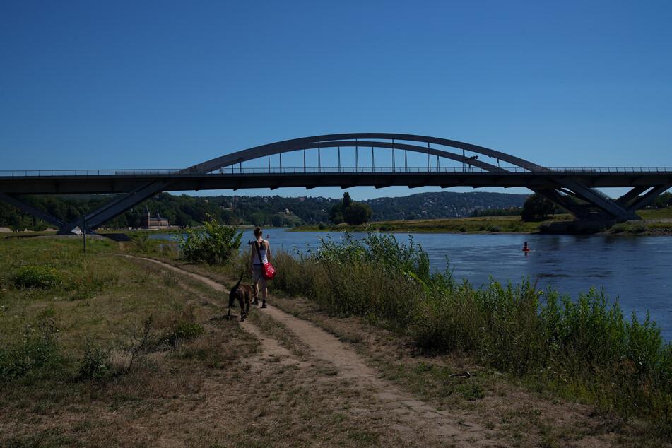 Die Waldschlößchenbrücke ist seit Jahren ein Schwarzbau.