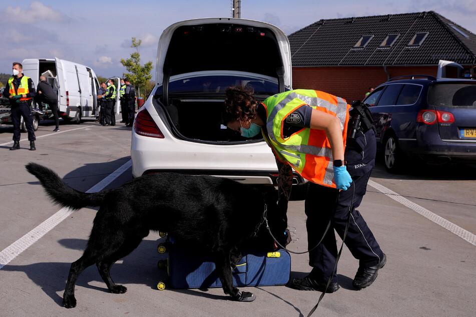 Spürhunde unterstützen die Zöllner bei der Suche.
