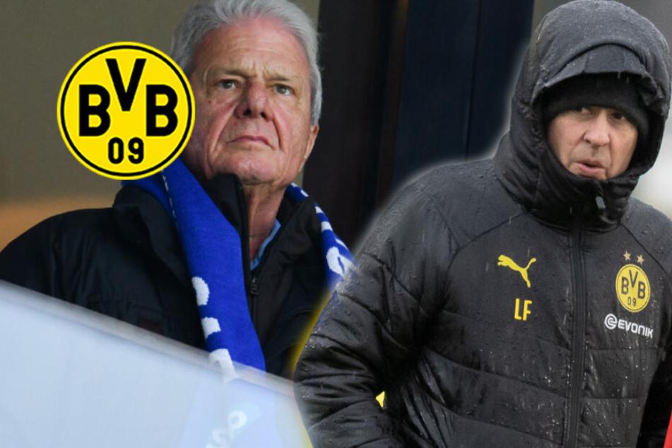 BVB stimmt Urteil zu: DFB sperrt Dortmund-Fans drei Jahre in Hoffenheim aus!