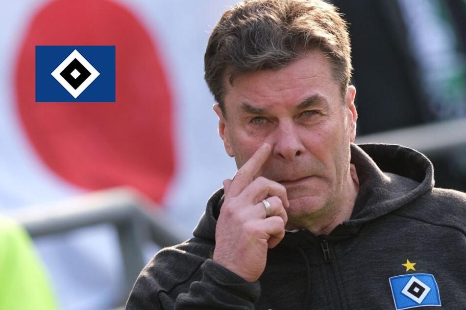 Panik wegen Coronavirus? Das sagt HSV-Trainer Dieter Hecking