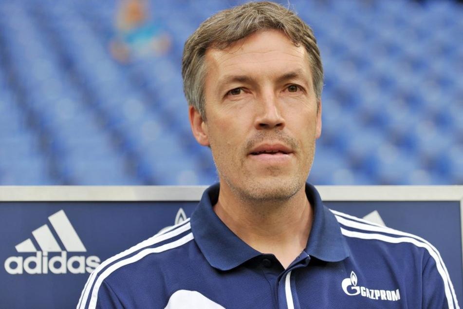 Es gibt Gerüchte, dass Uwe Grauer bald die Cheftrainer-Rolle übernehmen könnte.