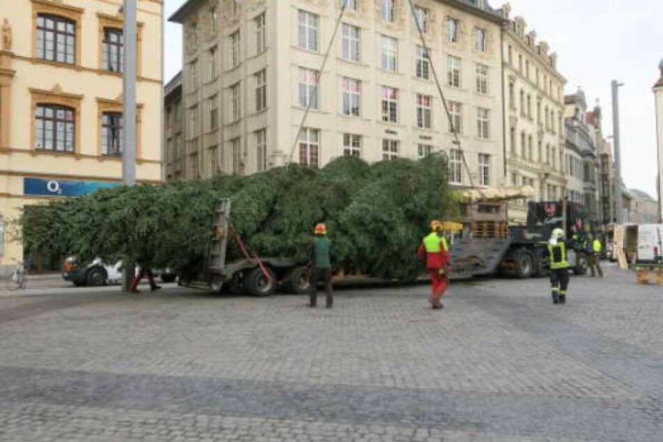 Aufbau des Leipziger Weihnachtsbaumes.