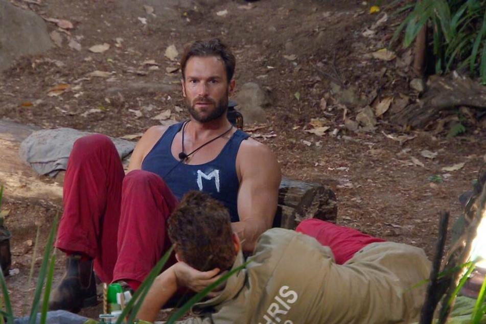 Coach-Yotta wollte eigentlich nur wenige Sekunden im Dschungel verbringen.