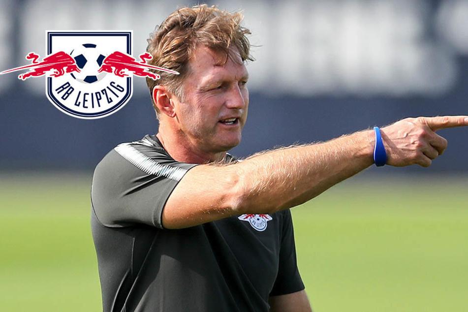 Wen rotiert RB-Trainer Hasenhüttl in Hamburg aus der Mannschaft?