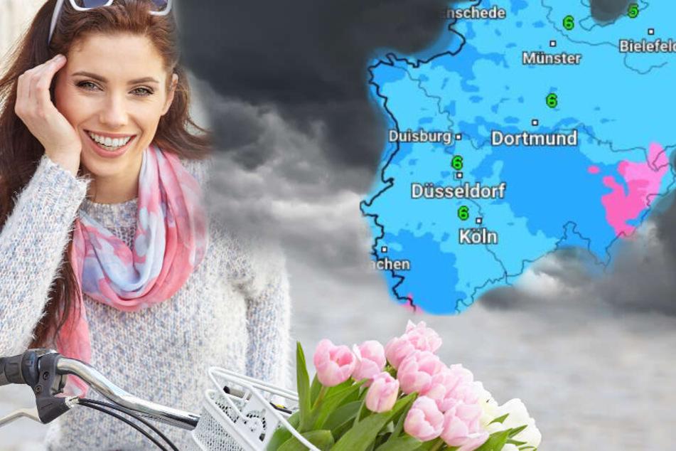 Der Deutsche Wetterdienst warnt für Donnerstag erneut vor einem kräftigen Aufleben des Windes. (Symbolbild)