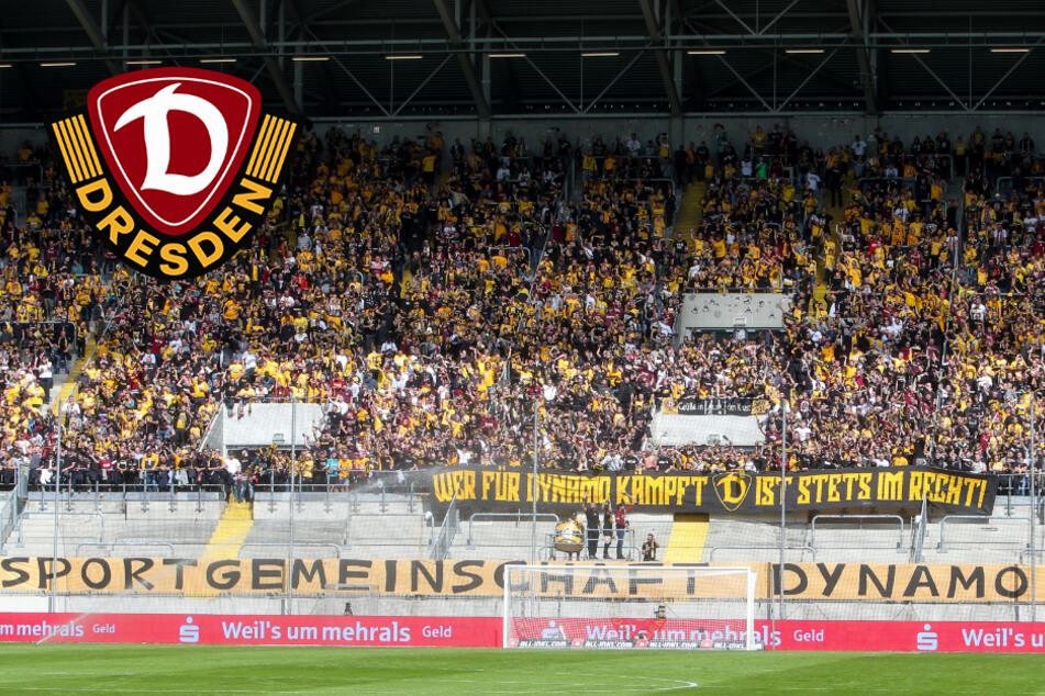 Dynamo-Ansetzungen für die Spieltage 9 bis 15 sind da!