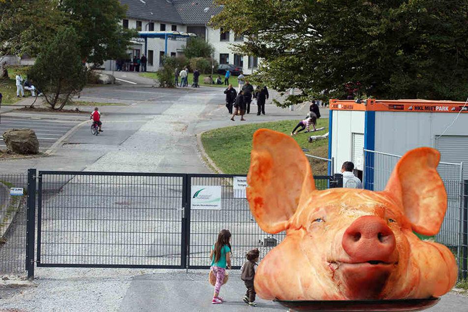 Vor einer Flüchtlingsunterkunft wurde ein Schweinekopf aufgespießt.