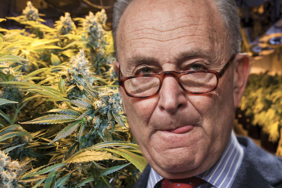 Senate Majority Leader Chuck Schumer is serious about pursuing federal marijuana reform (collage, stock image).