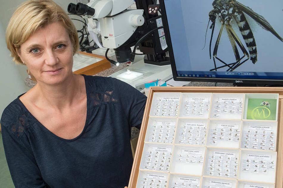Biologin Doreen Walther.